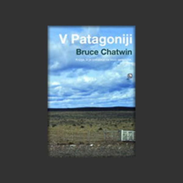 V Patagoniji